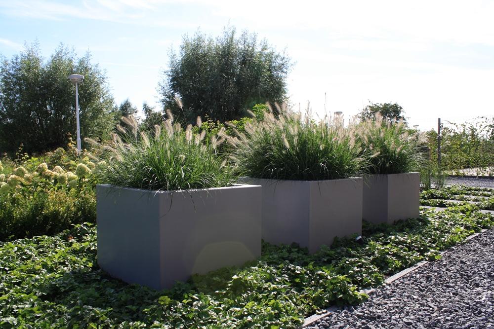 Moderne tuin in utrecht tuinontwerpburo groenendijk