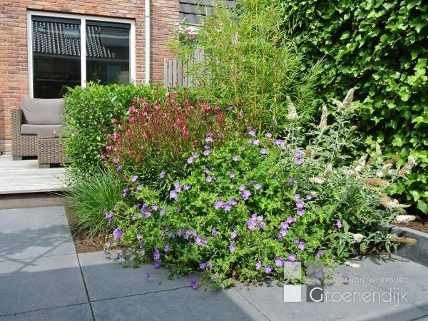 Tuinontwerp Kleine Tuin : Kleine tuin ontwerp elegant hortus tuinontwerp kleine tuinen with