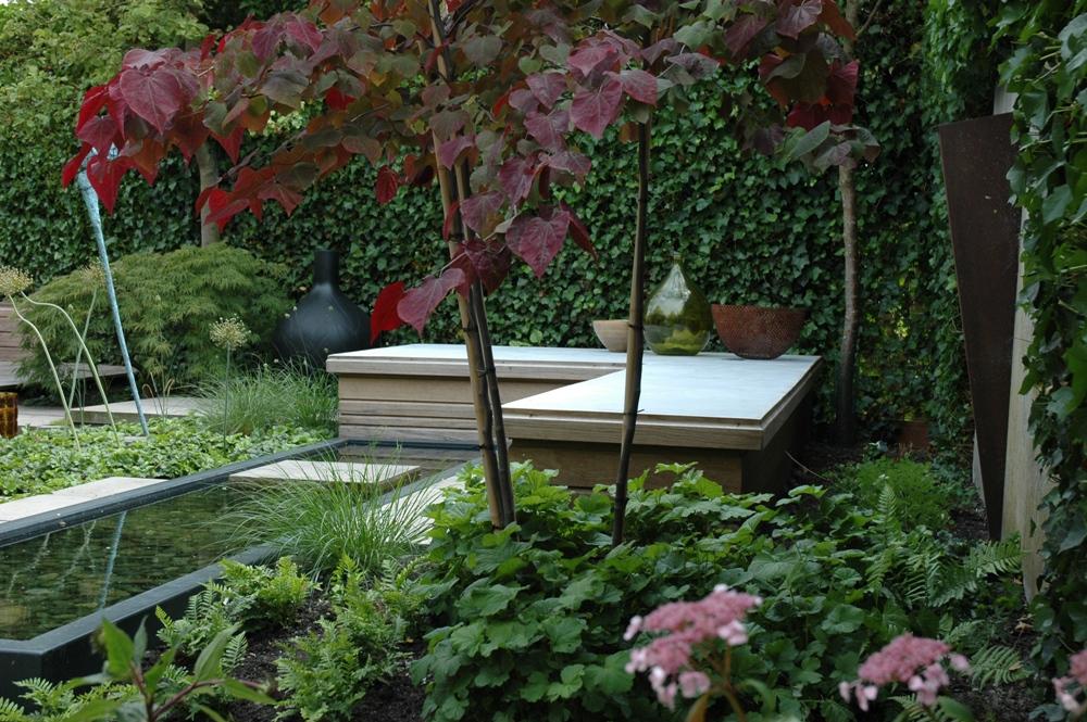 Moderne tuin in de meern tuinontwerpburo groenendijk for Moderne kleine tuin